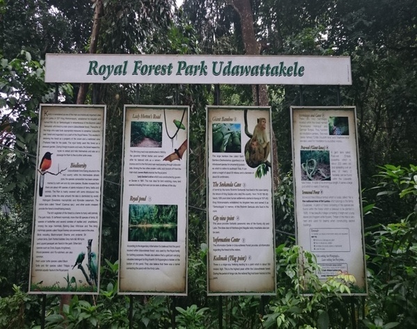 Royal Forest Park Udawattakelle
