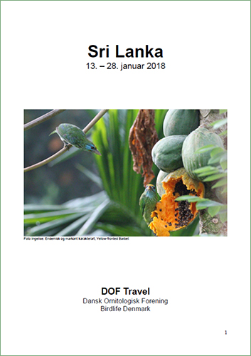 Trip report cover